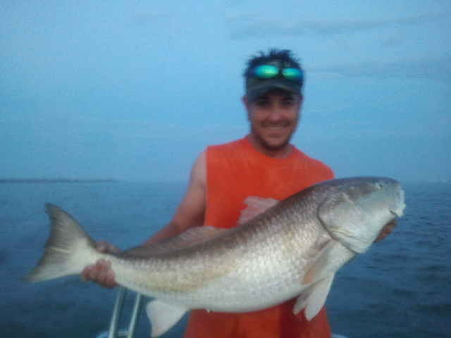 Bull Redfish in Ponce Inlet